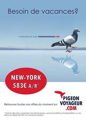 pub pigeon voyageur
