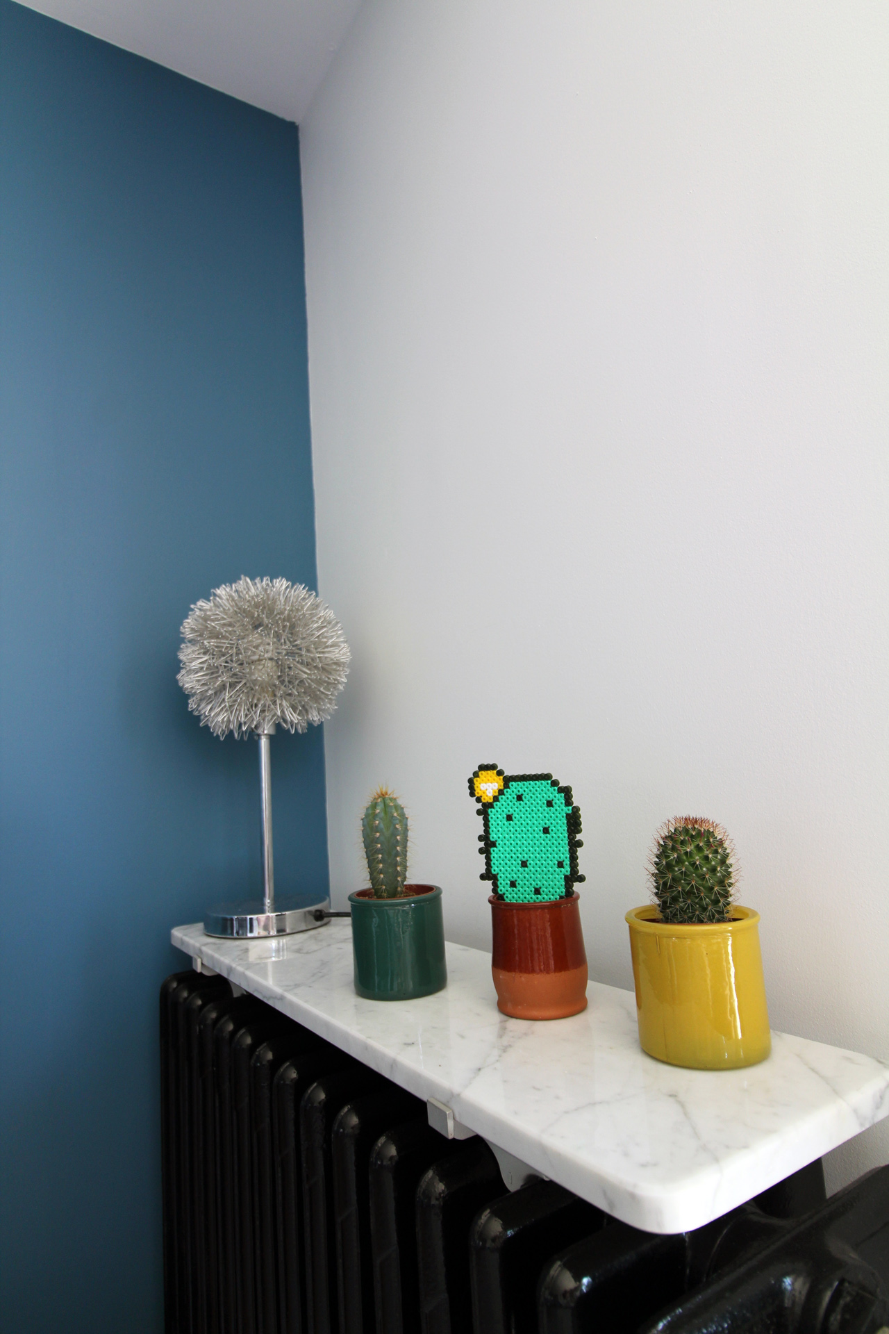 Cactus...