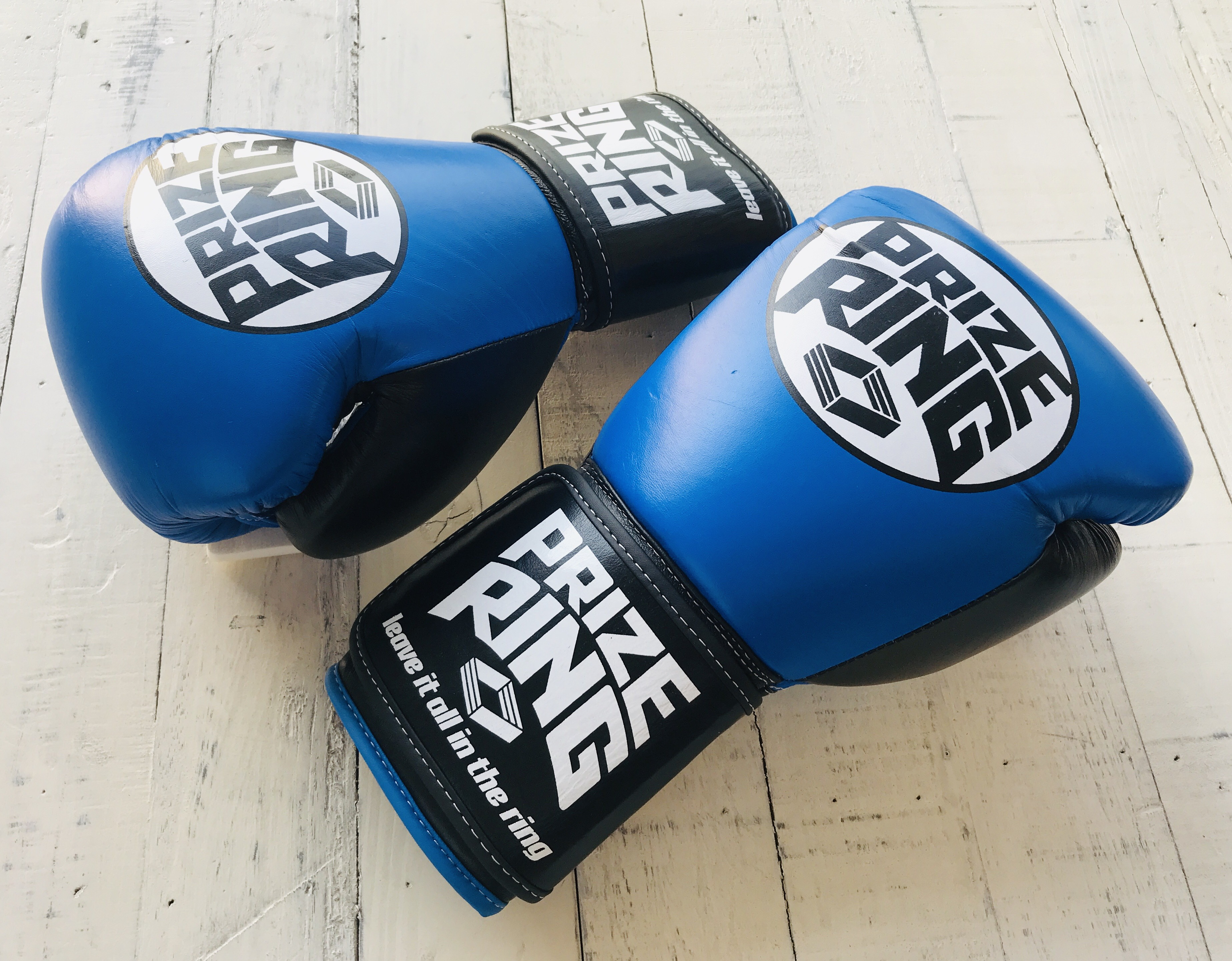"""""""Professional"""" Boxing Gloves"""