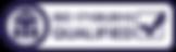 ISO 17100:2015 certified translator
