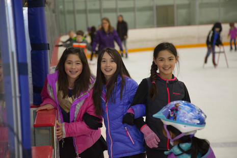 Ice Skating Party 2017