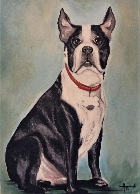 Pet Portraits, Broward and Palm Beach counties