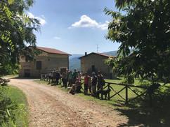 Passeggiata al Castagneto Giugno 2020