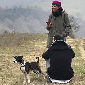 Sabato da cani