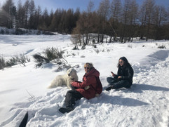 Cani delle nevi, Sestola Febbraio 2019