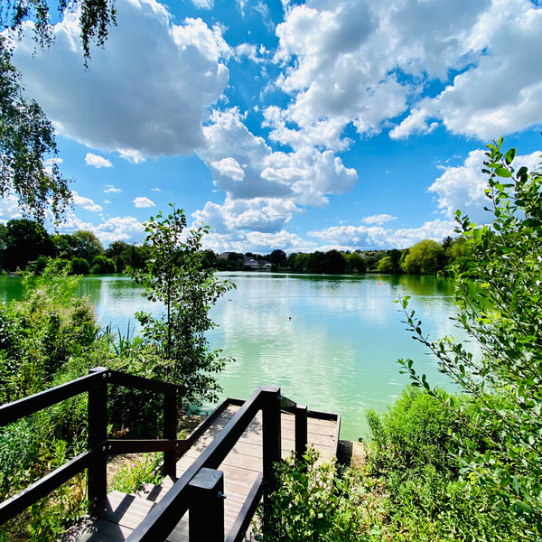 """3rd place - """"Serenity Now"""", South Norwood Lakes"""