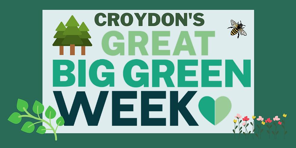 Croydon's Great Big Green Festival!