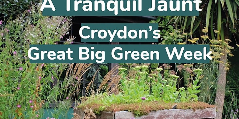 Go Jauntly x Tranquil Walk - Croydon's Great Big Green Festival