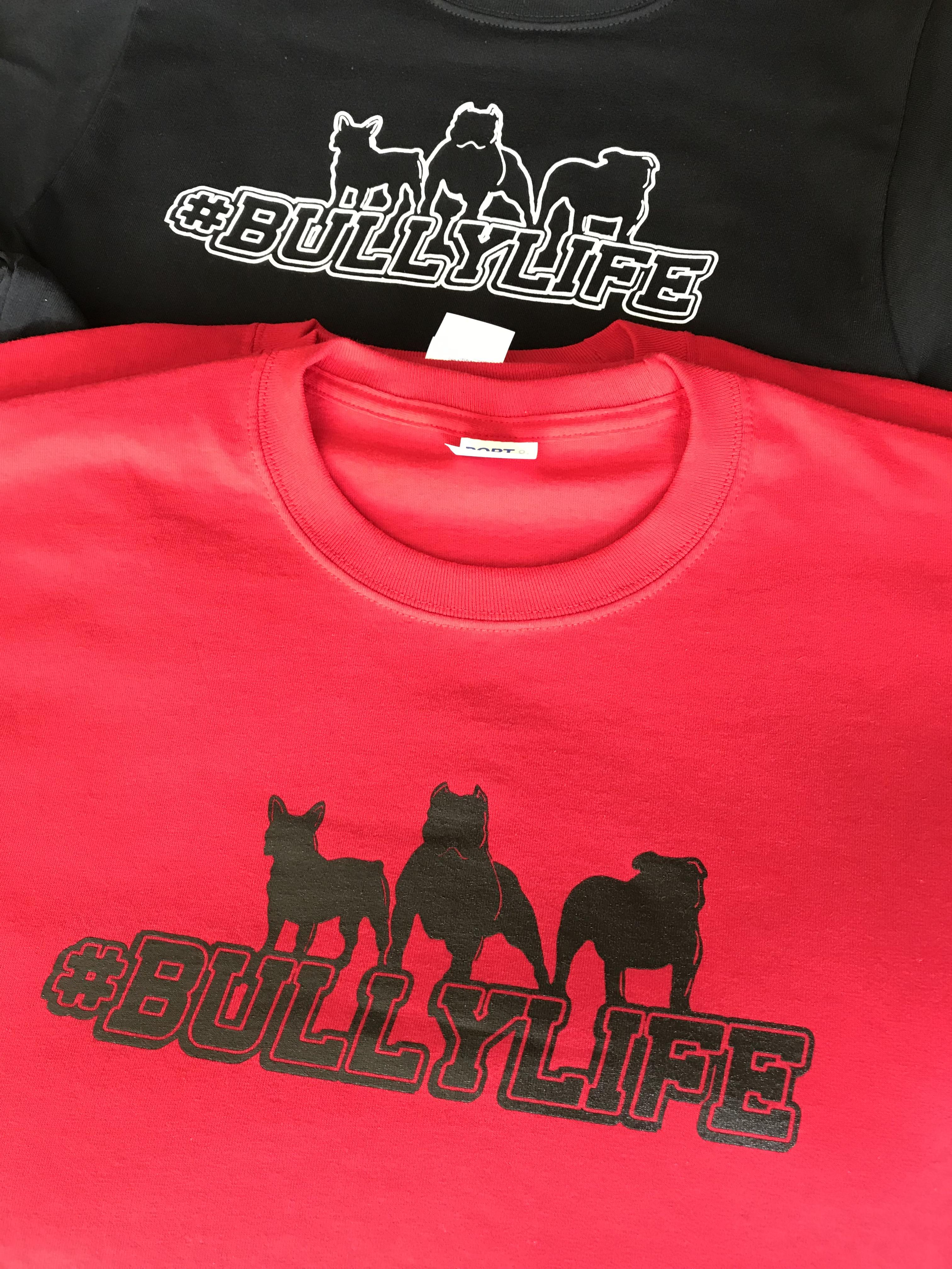 #bullylife
