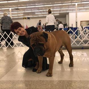 Titan in Grove OK dog show April 2021
