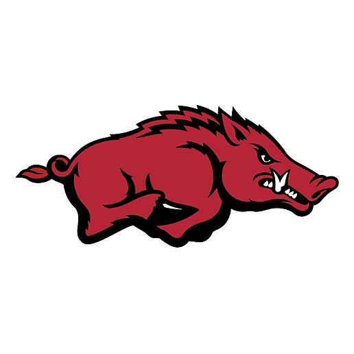 Arkansas bullmasitff