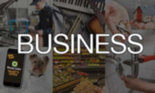Business-v2.jpg