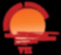 VTI__logo-01.png