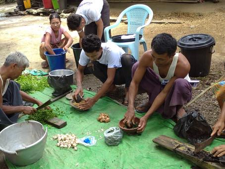Bio-inputs Training in 30 villages in Kyauktaw Tsp