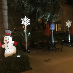 12-21-19 - Santa Rosa - Holiday 1.JPG
