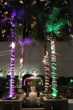 Bonaventure Lighting - Palm Trees In Cen
