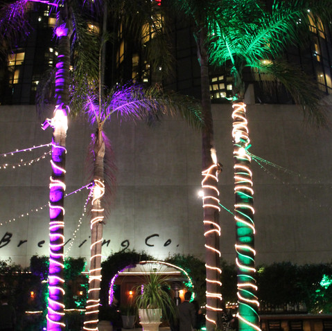 Bonaventure Lighting - Palm Trees In Cen