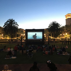 26ft Screen - The Park.JPG