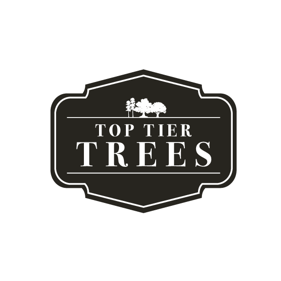 Top Tier Trees Logo