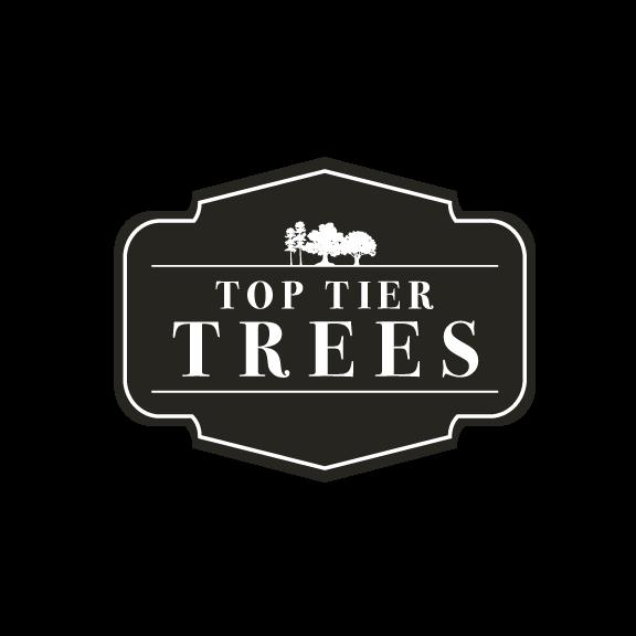 Top Tier Trees Logo