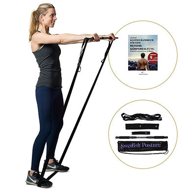 Swedish Posture Mini Gym Full Body Exercise Fitness Kit by Active Life Solutions