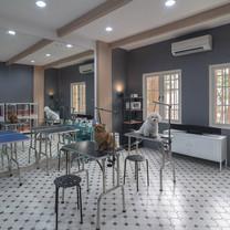 Interior View - BARKBERSHOP Pet Cafe