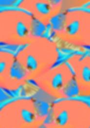 queenfish1-023.jpg
