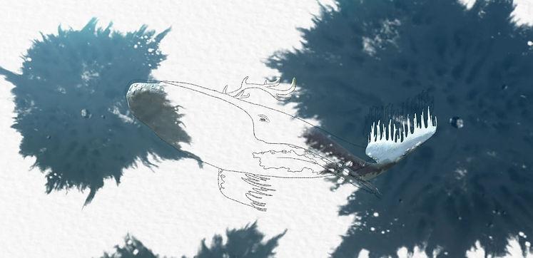 Screenshot 2021-02-17 091952.jpg