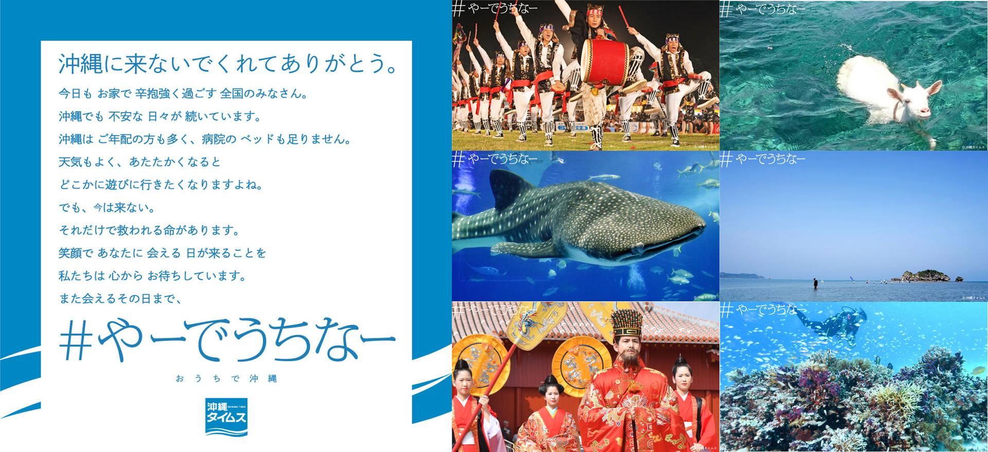 Okinawa Times / #やーでうちなー