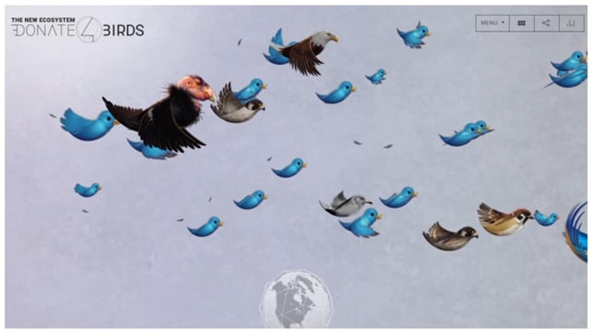 Conservation International / Donate 4 Birds