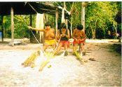 Mulheres_Waimiri_Atroari_preparando_palha_de_buruti_para_confecção_de_artefatos