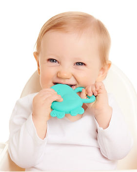 ChewBuddy Bug Teether