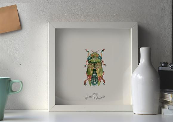 Insecte solo - vert I
