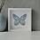 Thumbnail: Papillon solo - Lapiz Lazulli