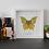 Thumbnail: Papillon solo - Solaris