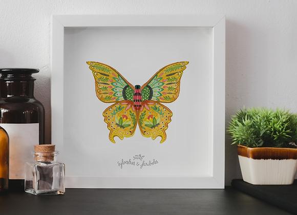 Papillon solo - Solaris