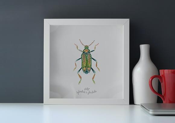 Insecte solo - vert II