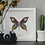 Thumbnail: Papillon solo - Mamba Noire