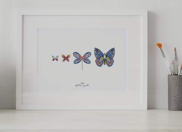 Papillon Famille Azuli