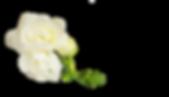 AdobeStock_171335123_1.png