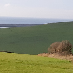 Across Rodden Hive to Chesil Bank