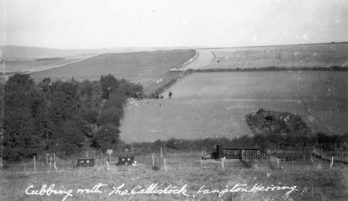 Cattistock Hunt