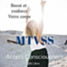 MTVSS ACCESS BREST FINISTERE