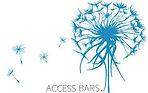 Formation Access Bars Finistère Brest