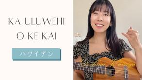 講師の歌♬ ハワイアンソング🐚 Ka Uluwehi O Ke Kai