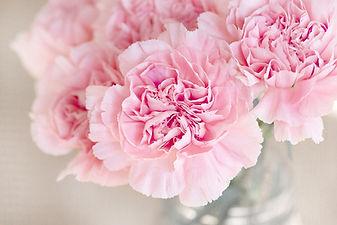 flowers-1325012_1280.jpg