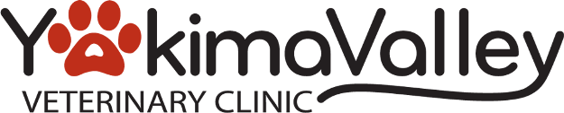YVV Logo