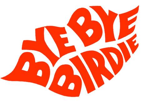 'Bye Bye Birdie' soars at FCHS