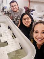 The team: James Peyla (Fulbright), Qiaz Hua (PhD student), Jasmin Martino (post doc)
