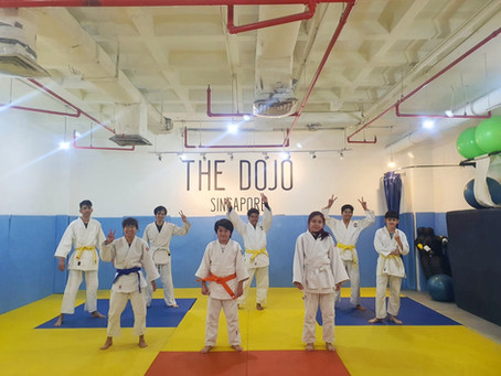 5 Reasons Judo Is the Ideal Sport for Adolescents